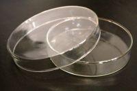 Petriho miska 100/20 mm